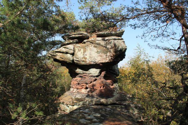 Dimberg-Rötzenberg